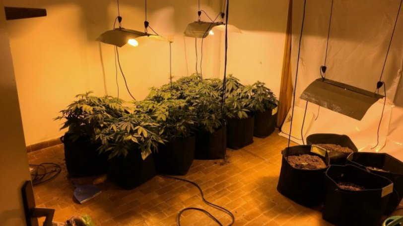 Eντοπισμός και συλλήψεις για εργαστήριο υδροπονικής καλλιέργειας κάνναβης σε οικία